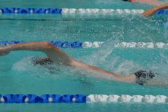 Freestyle Swimmer Racing. Swim meet, freestyle swimming race Stock Photo