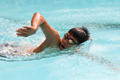 Freestyle. In the swimming pool Royalty Free Stock Photo