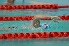 Freestyle Swimming Race. Freestyle swimmer racing and splashing Stock Images