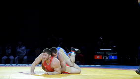 Freestyle wrestling stock footage