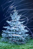 Freeze christmas tree Royalty Free Stock Photos