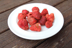 Freeze dired strawberries Stock Photos
