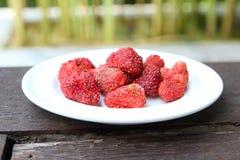 Freeze dired strawberries Stock Photo