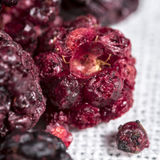 Freeze dried blackberries for cocktails and highballs Royalty Free Stock Photo