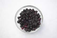 Freeze dried blueberries Royalty Free Stock Photo
