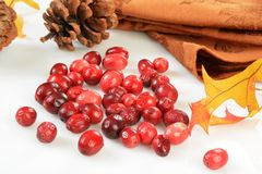 Freeze dried cranberries Royalty Free Stock Images