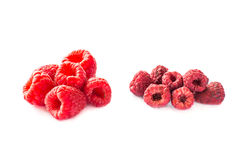Freeze dried and fresh raspberries on a white background. Stock Image
