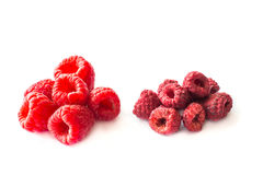 Freeze dried and fresh raspberries on a white background. Freeze dried and fresh raspberries on a white background with shadow. Lyophilization. Food for royalty free stock photography