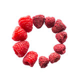 Freeze dried and fresh raspberry on a white background in the circle. Lyophilization. Food for astronauts Stock Image