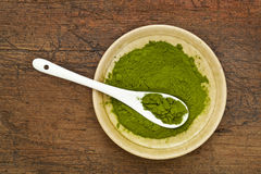 Freeze-dried organic wheat grass powder Stock Photos