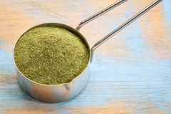 Freeze-dried organic wheat grass powder Royalty Free Stock Photos
