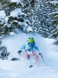 Freeze motion of freerider in deep powder snow. Skiing in forest Royalty Free Stock Photo