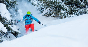 Freeze motion of freerider in deep powder snow. Skiing in forest Stock Photos