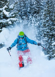 Freeze motion of freerider in deep powder snow. Skiing in forest Royalty Free Stock Image