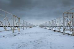 Freezed Petergof海湾 库存图片