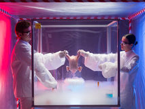 Freezing a chicken in protection enclosure. Two scientists, a men and a woman, conducting chemical experiments on a raw chicken in a protection enclosure, in a Royalty Free Stock Photo