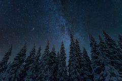 Freezing cold winter night landscape stock images