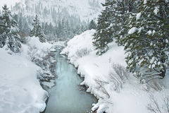 A Freezing Creek Stock Photography