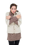 Freezing cute brunette in winter fashion looking at camera Royalty Free Stock Image