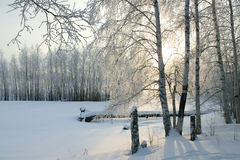 Freezing day Royalty Free Stock Photography