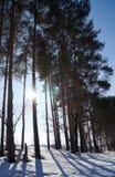 Freezing day stock photo