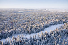 Freezing day in forest Stock Photo