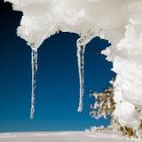 Freezing, Icicle, Ice, Winter Royalty Free Stock Photo