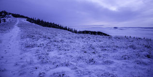 Of freezing landscape after sunset they peppered honorary snow Stock Photos