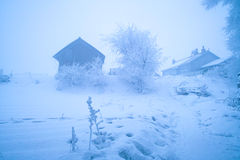 A freezing morning. A foggy freezing morning after snowing Stock Photography