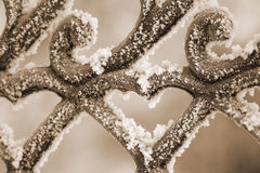 Freezing patterns on metal Royalty Free Stock Photo