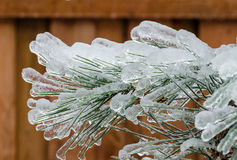 Freezing rain Stock Photos