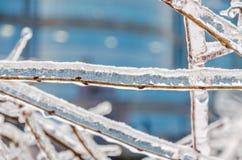 Freezing rain Royalty Free Stock Photos