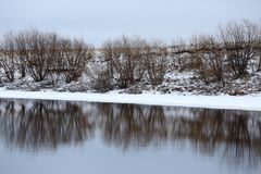 Freezing river. Reflection of river bank in freezing water stock images