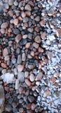 Freezing rocks at the shore Royalty Free Stock Photo