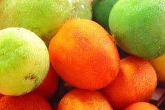 Freezing tomatos Royalty Free Stock Photos
