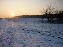 Freezing winter. Fields covered in snow and the sun setting stock photography