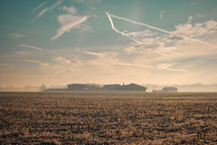 Freezing winter morning on a crop field Stock Photo