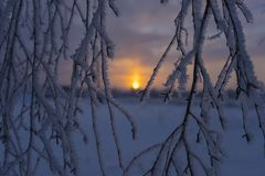 Freezing winter sunrise with selective focus Stock Photography