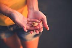 Fregadero de un molusco en las manos del ` s de la mujer Foto de archivo