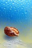 Fregadero del mar que descansa sobre la canción Foto de archivo