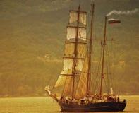 fregata Zdjęcie Stock