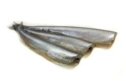 Freh Kleinfische ohne Kopf Lizenzfreie Stockbilder