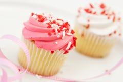 Frehly Gebakken Cupcakes Royalty-vrije Stock Foto