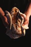 Frehsly a fait le pain cuire au four tenu par des mains des hommes Photo libre de droits