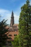 Freiburg im Breisgau, Tyskland - domkyrka/kyrka Royaltyfri Fotografi