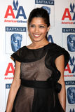 Freida Pinto Stock Photography