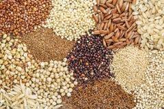 Freie Kornzusammenfassung des Glutens Lizenzfreie Stockbilder