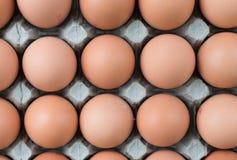 Freie Reichweiten-Eier Stockfotos