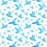 Freie Vögel, die minimale Aquarellmalerei des nahtlosen Musters fliegen lizenzfreie abbildung
