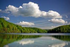 Freier Gebirgssee im grünen Wald Stockfoto